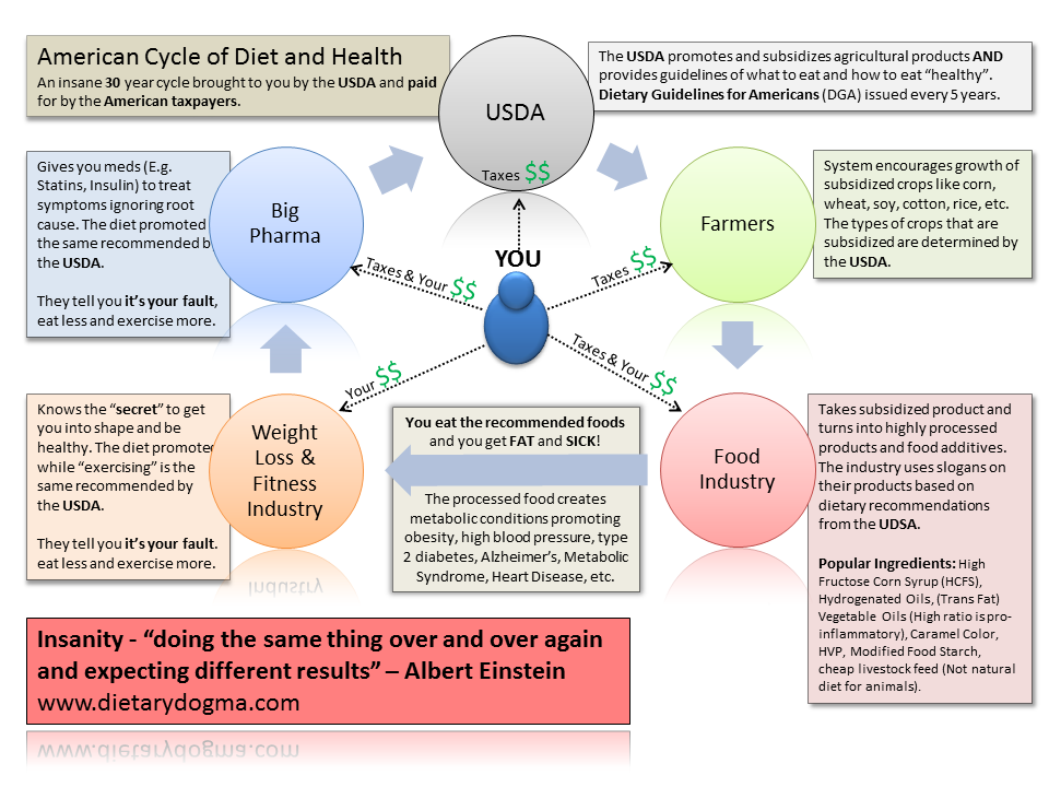 Cycle of Diet and Health v2